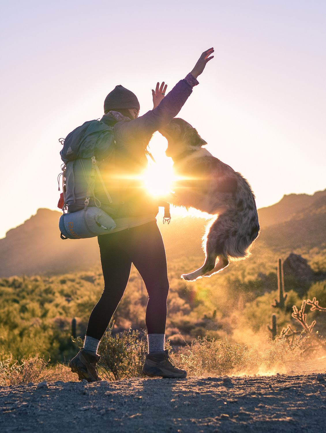 10 Tips for Backpacking with your Dog