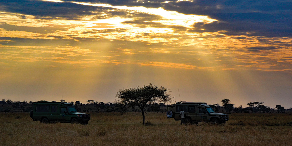 Traveling To Tanzania? Here's EVERYTHING You Need To Know